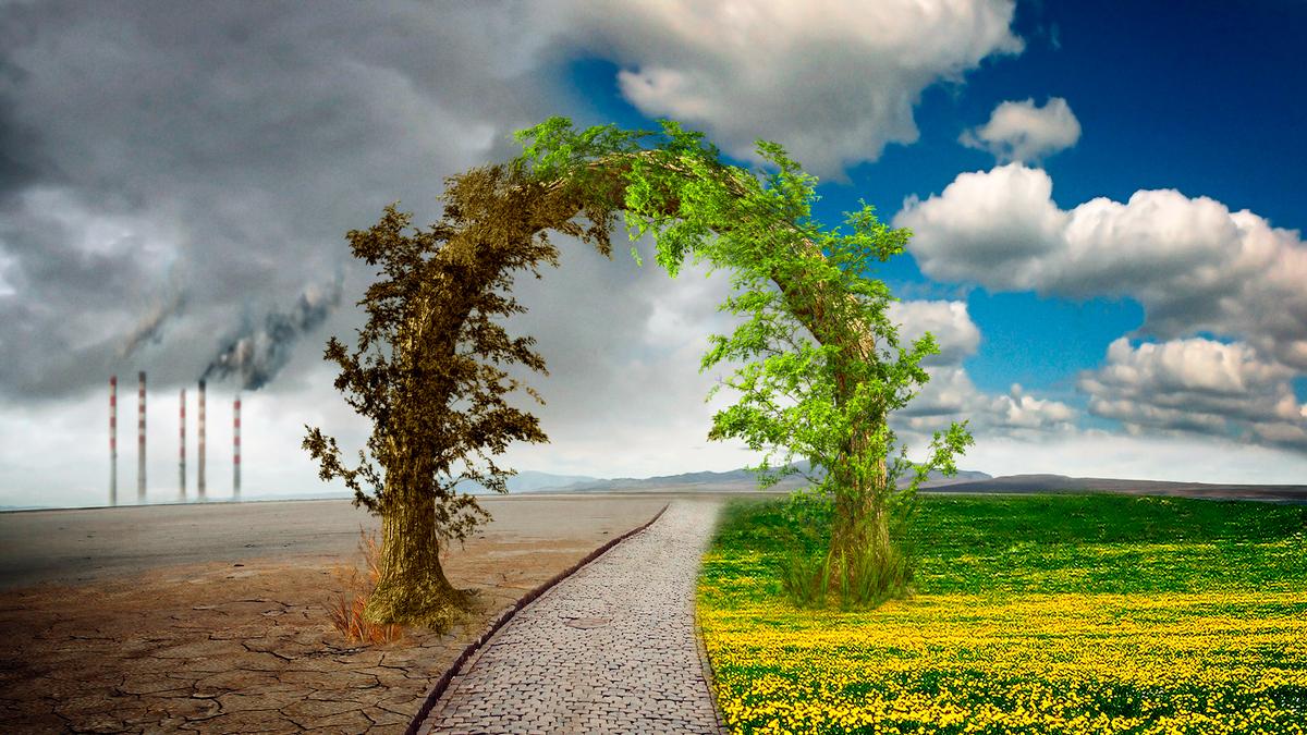 Entre dos mundos. Naturaleza y tecnología